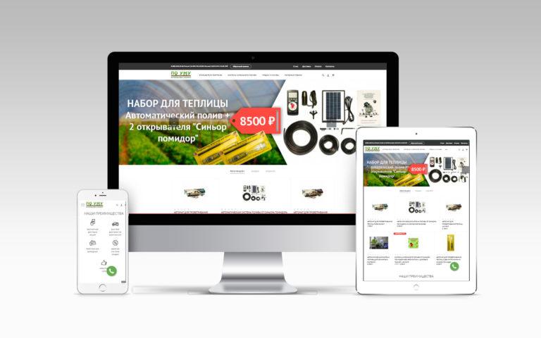 Создание Интернет магазина poumu.su